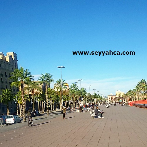 Barselona Liman Yolu
